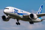 たかしさんが、成田国際空港で撮影した全日空 787-881の航空フォト(写真)