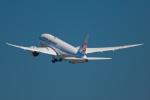Simeonさんが、羽田空港で撮影した日本航空 787-846の航空フォト(写真)