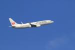 気分屋さんが、羽田空港で撮影したJALエクスプレス 737-846の航空フォト(写真)