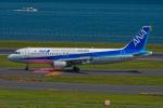 Simeonさんが、羽田空港で撮影した全日空 A320-211の航空フォト(写真)