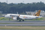 pringlesさんが、成田国際空港で撮影したタイガーエア 台湾 A320-232の航空フォト(写真)