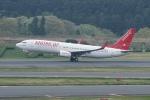 pringlesさんが、成田国際空港で撮影したイースター航空 737-86Jの航空フォト(写真)