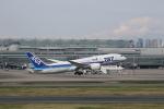 saku39さんが、羽田空港で撮影した全日空 787-881の航空フォト(写真)