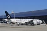 Take51さんが、関西国際空港で撮影した全日空 777-281の航空フォト(写真)