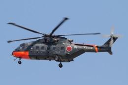 なぞたびさんが、岐阜基地で撮影した海上自衛隊 CH-101の航空フォト(写真)