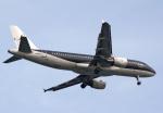 tkosadaさんが、羽田空港で撮影したスターフライヤー A320-214の航空フォト(写真)
