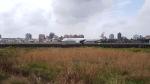 tomoe-japanさんが、高雄国際空港で撮影したキャセイドラゴン A321-231の航空フォト(写真)