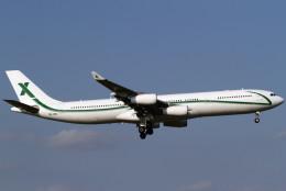 Itami Spotterさんが、成田国際空港で撮影したエアXチャーター A340-312の航空フォト(写真)