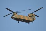 350JMさんが、厚木飛行場で撮影した陸上自衛隊 CH-47Jの航空フォト(写真)