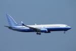 ceskykrumlovさんが、羽田空港で撮影したウェルズ・ファーゴ・バンク・ノースウェスト 737-8EQ BBJ2の航空フォト(写真)