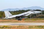 Echo-Kiloさんが、茨城空港で撮影した航空自衛隊 F-15J Eagleの航空フォト(写真)