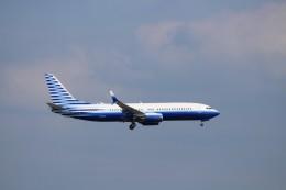 ハム太郎さんが、羽田空港で撮影したEIEイーグル 737-8EQ BBJ2の航空フォト(写真)