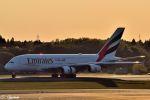 吉田高士さんが、成田国際空港で撮影したエミレーツ航空 A380-861の航空フォト(写真)