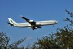 NIGHTATTACKさんが、成田国際空港で撮影したエアXチャーター A340-312の航空フォト(写真)