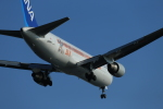 pcxさんが、羽田空港で撮影した全日空 767-381/ERの航空フォト(写真)