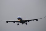 GRX135さんが、新千歳空港で撮影したチャイナエアライン A340-313Xの航空フォト(写真)