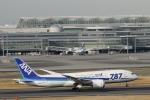 ケニケニさんが、羽田空港で撮影した全日空 787-881の航空フォト(写真)