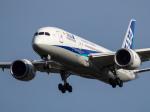 Mame @ TYOさんが、成田国際空港で撮影した全日空 787-881の航空フォト(写真)