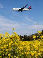 Mame @ TYOさんが、成田国際空港で撮影したデルタ航空 767-332/ERの航空フォト(写真)