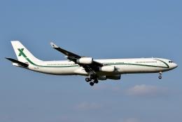 SKY TEAM B-6053さんが、成田国際空港で撮影したエアXチャーター A340-312の航空フォト(写真)