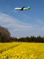 Mame @ TYOさんが、成田国際空港で撮影した春秋航空日本 737-81Dの航空フォト(写真)