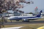 神宮寺ももさんが、高松空港で撮影した全日空 777-281の航空フォト(写真)