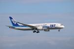 ハム太郎さんが、羽田空港で撮影した全日空 787-881の航空フォト(写真)