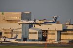 うすさんが、伊丹空港で撮影したエアーニッポンネットワーク DHC-8-402Q Dash 8の航空フォト(写真)