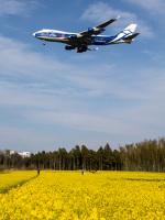 Mame @ TYOさんが、成田国際空港で撮影したエアブリッジ・カーゴ・エアラインズ 747-406F/ER/SCDの航空フォト(写真)