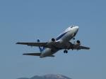 sanadaさんが、熊本空港で撮影したANAウイングス 737-54Kの航空フォト(写真)