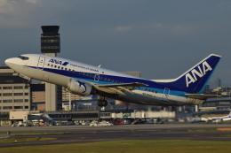 なかむーさんが、伊丹空港で撮影したANAウイングス 737-54Kの航空フォト(写真)