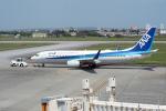 とおまわりさんが、宮古空港で撮影した全日空 737-881の航空フォト(写真)