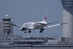 かずまっくすさんが、羽田空港で撮影した日本航空 767-346/ERの航空フォト(写真)