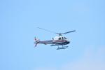 ゆっくんさんが、那覇空港で撮影した法人所有 AS350B2 Ecureuilの航空フォト(写真)