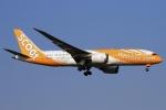 ウッディーさんが、新千歳空港で撮影したスクート 787-8 Dreamlinerの航空フォト(写真)