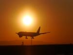 ムネキンさんが、松山空港で撮影した全日空 777-281/ERの航空フォト(写真)