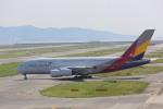meijeanさんが、関西国際空港で撮影したアシアナ航空 A380-841の航空フォト(写真)