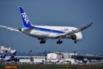 パンダさんが、成田国際空港で撮影した全日空 787-881の航空フォト(写真)