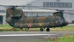航空見聞録さんが、八尾空港で撮影した陸上自衛隊 CH-47Jの航空フォト(写真)