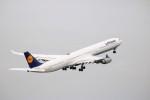 A350XWB-HNDさんが、羽田空港で撮影したルフトハンザドイツ航空 A340-642の航空フォト(写真)