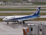 51ANさんが、伊丹空港で撮影したANAウイングス 737-54Kの航空フォト(写真)