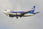 こすけさんが、羽田空港で撮影した全日空 737-54Kの航空フォト(写真)