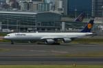 カメラマンあきさんが、羽田空港で撮影したルフトハンザドイツ航空 A340-642Xの航空フォト(写真)