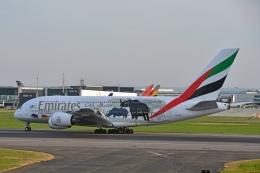 flytaka78さんが、ロンドン・ヒースロー空港で撮影したエミレーツ航空 A380-861の航空フォト(写真)