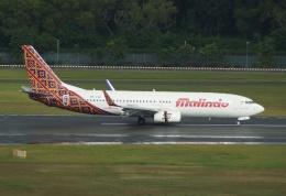 やまっちさんが、シンガポール・チャンギ国際空港で撮影したバティク・エア 737-8GPの航空フォト(写真)