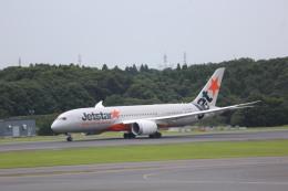 meijeanさんが、成田国際空港で撮影したジェットスター 787-8 Dreamlinerの航空フォト(写真)