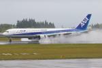 安芸あすかさんが、鹿児島空港で撮影した全日空 767-381の航空フォト(写真)