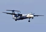 バーダーさんさんが、新千歳空港で撮影したオーロラ DHC-8-402Q Dash 8の航空フォト(写真)