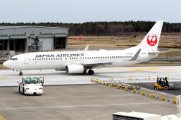 KAW-YGさんが、三沢飛行場で撮影した日本航空 737-846の航空フォト(写真)