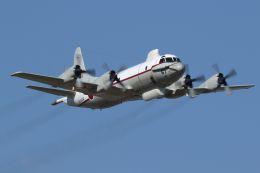isiさんが、厚木飛行場で撮影した海上自衛隊 UP-3Cの航空フォト(写真)
